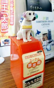 北海道盲導犬協会 ミーナの募金箱